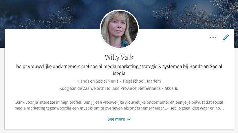 LinkedIn profile Willy Valk